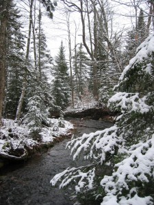 Adirondack stream in Winter