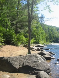 Sandy beach with boulders beside river
