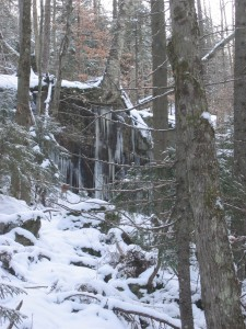 Icicles seen from Black Bear Mountain trail