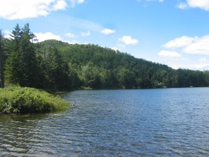 Forrested shores of Peaked Mountain Pond in Central Adirondacks