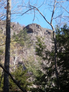 Rocky outcrop seen through trees