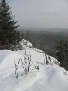 Top of Black Bear Mountain in the West Central Adirondacks