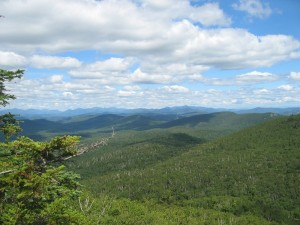 View of Central Adirondack forest