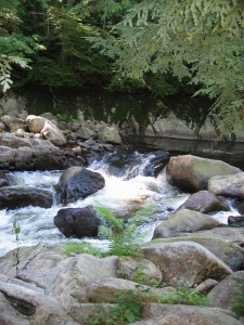 Boulder strewn river with frothy rapids