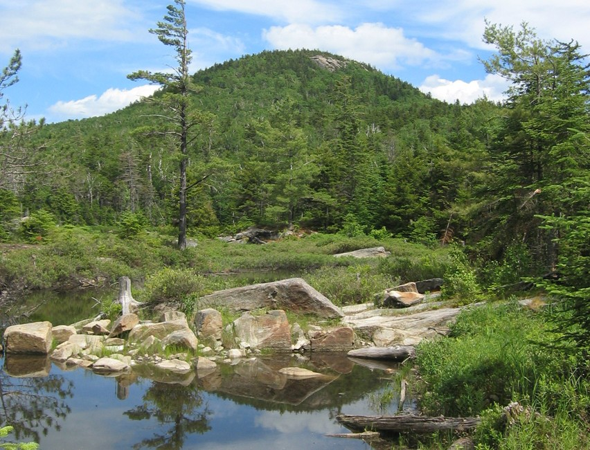 Small pond with Crane Mountain in the background