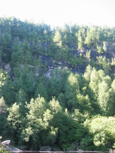 The sheer Blue ledges cliffs dotted with trees.