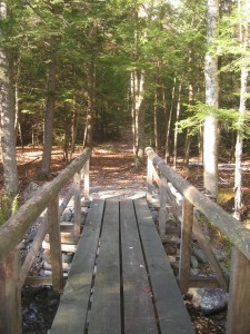 Wooden bridge across Hoffman Notch Brook