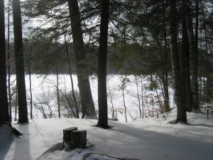 Campsite by Good Luck Lake