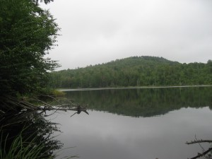 Glasby Pond along Cat Mountain trail
