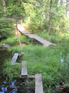 Collapsed bridge along the Floodwood loop