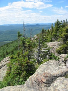View of Southern Adirondacks from atop Crane Mountain