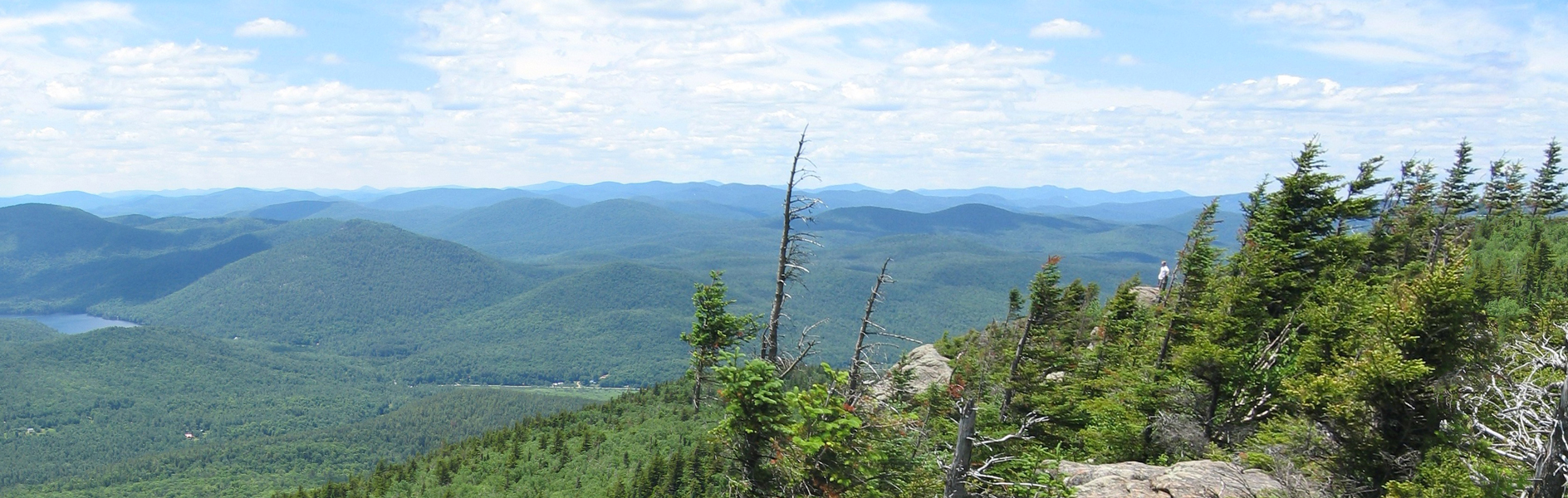 Southern Adirondack Region seen from atop Crane Mountain