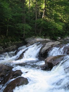 East Branch Sacandaga River rapids