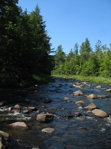 East Branch Sacandaga River below the gorge