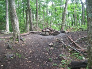 Wooded campsite near Chimney Mountain