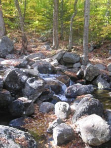 Water flowing through cobbles of Hoffman Notch brook
