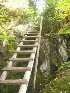 Ladder along the Indian Pass trail
