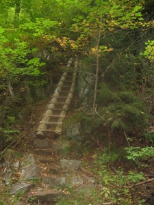 Ladder up to Lost Lookout trail found after crossing the Beaver Meadow falls bridge