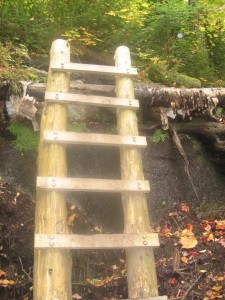 Log Ladder leading to Indian Head