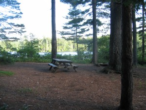 Picnic table at Little Square Pond