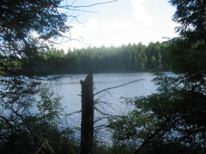 Middle Pond along the Floodwood Loop