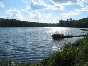 Middle Pond as seen from Floodwood Road