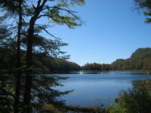 Campsite at Mitchell Ponds in West Central Adirondacks