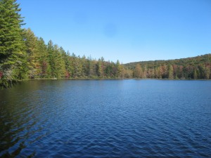 Mitchell Pond in the West Central Region of the Adirondacks