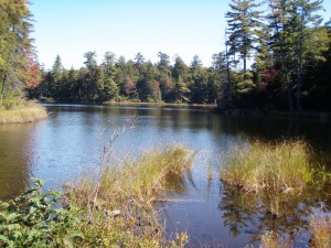 Moss Lake in the West Central Region of the Adirondacks