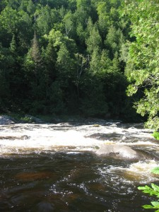 Rapids along the Hudson River with Adirondack forest in background