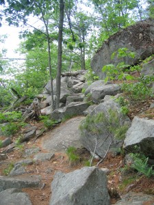 Exposed boulders along a rugged section of the Crane Mountain Trail