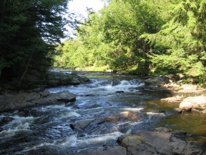 Sacandaga River above falls