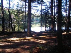 Sis Lake in the West Central Region of the Adirondacks