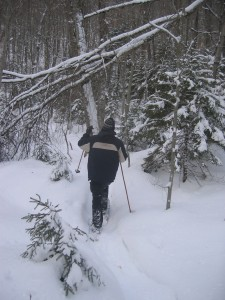 Snowshoeing along the trail to Good Luck Cliffs