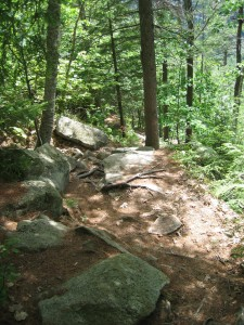 Rugged and steep descent along the return portion of trail