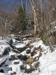 Trail to Pitchoff ridge line
