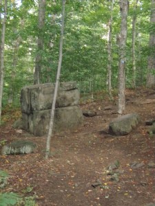 Square boulder  in the middle of a hardwood forest