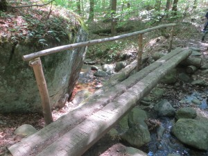 Two logs forming a bridge over a brook along the trail